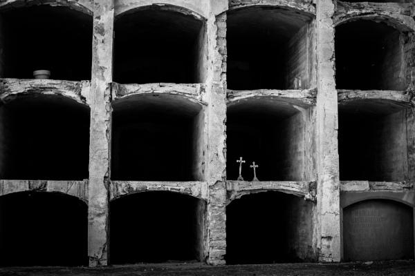 Empty niches